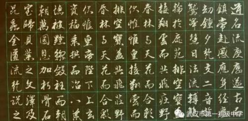 窗邀星影笔墨涌,帘卷晨曦纸砚芳——武汉书法家王德成作品欣赏