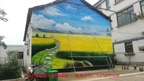 高端艺术彩绘哪家强?浙江金华东阳鑫悦墙绘专业创作