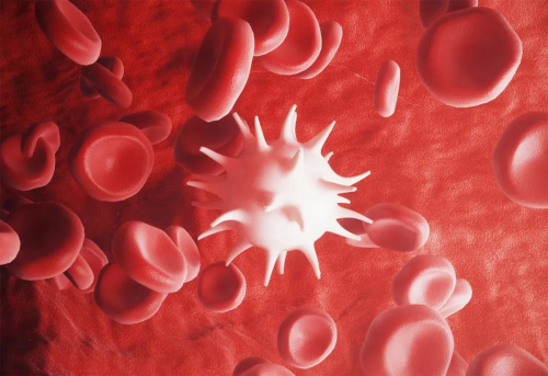 对话免疫学家:COVID-19 紧急状态下的人体免疫系统