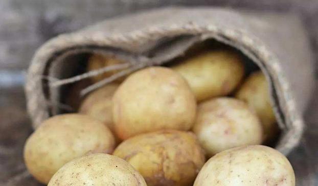 """健康养生之路:土豆的""""克星""""千万要注意了"""