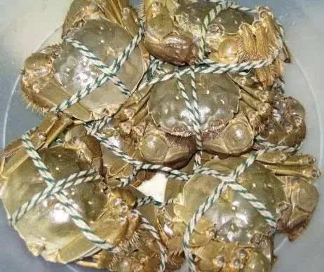 食物禁忌小常识—螃蟹篇