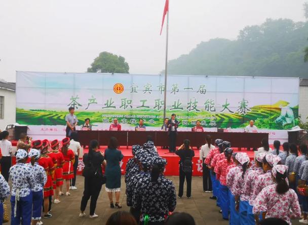 宜宾首届茶产业职工职业技能大赛在筠连举行