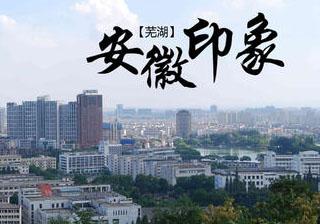 芜湖市首个旅游类市级地方标准成功立项
