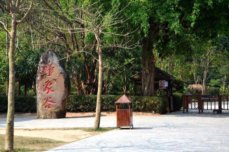 西双版纳旅游景点推荐:野象谷