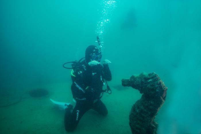 黄渤海底直播首秀三亚上演 为海洋环境保护站台